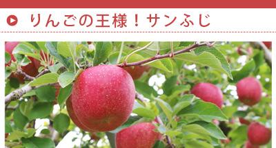 link_fuji